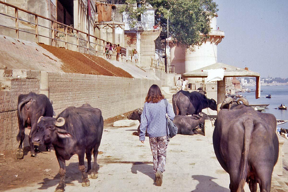 ghats in benares