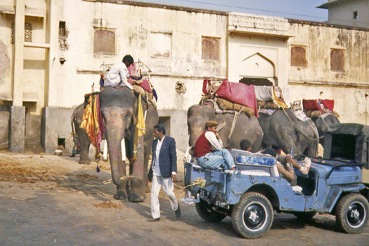 Elefants to fort ajmer