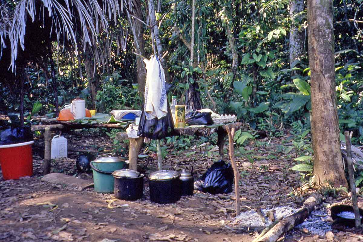 Jungle camp in Peru