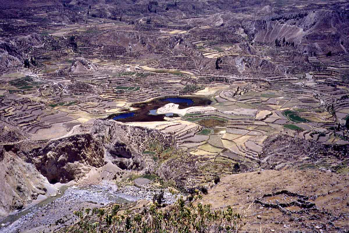 Colca Canyon, Cruz del Condor