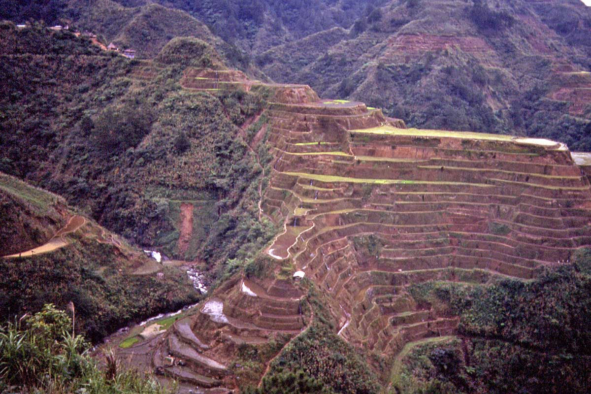 rice terraces philippines