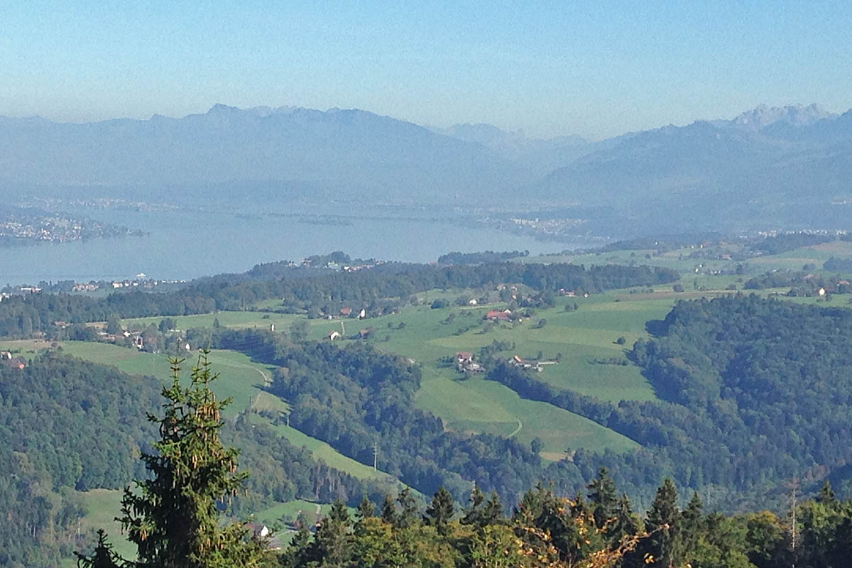 View from Albishorn to Rapperswil with lake Zurich