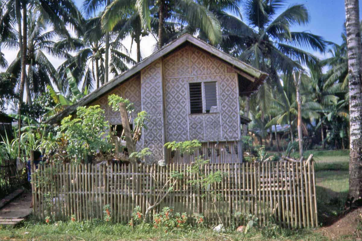 House on the philippines