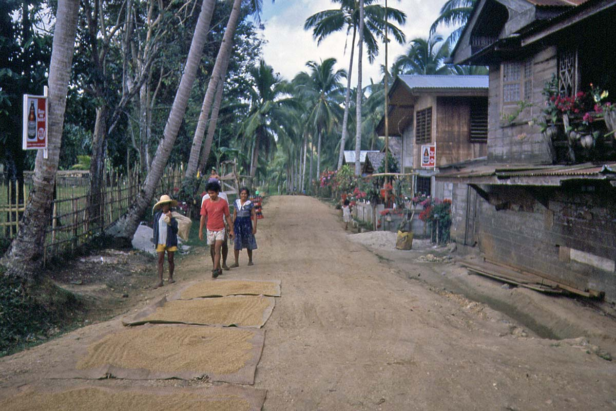 Village on the Philippines