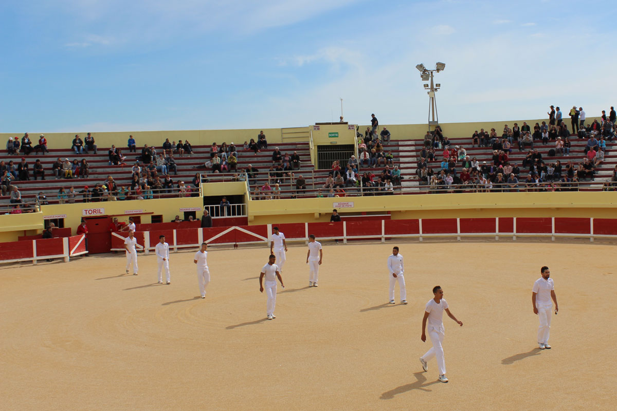 arena in camargues