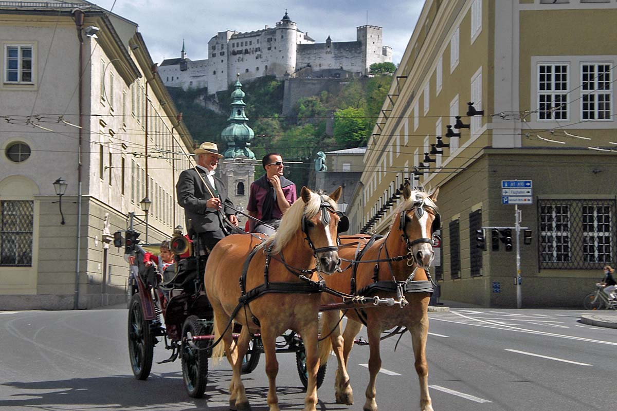 salzburg horses and castle