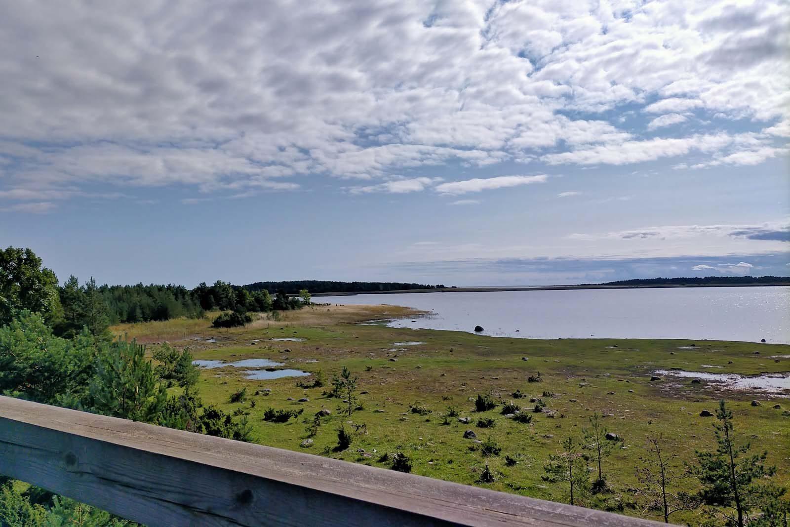 Dieses Bild hat ein leeres Alt-Attribut. Der Dateiname ist 201-Estland-Roadtrip-View-Point-1600x1067.jpg